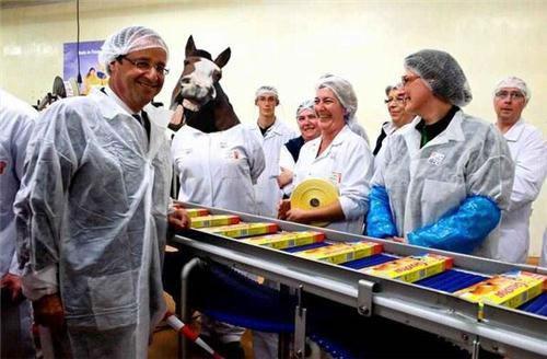 détournement parodie findus cheval (24)