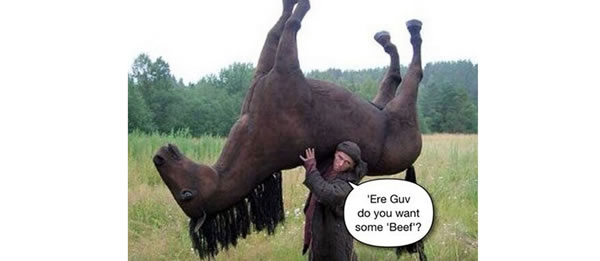 détournement parodie findus cheval (3)