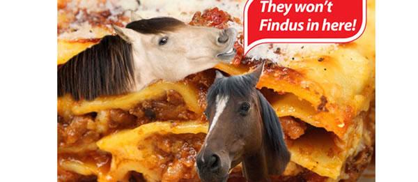 détournement parodie findus cheval (4)