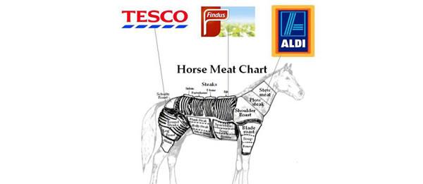 détournement parodie findus cheval (5)