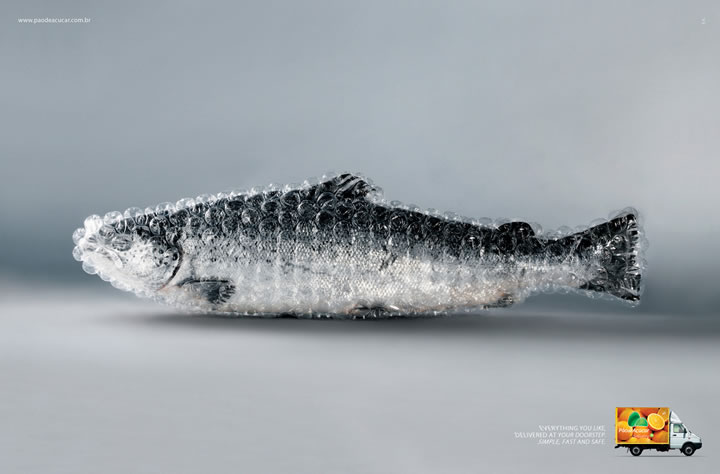 Pao-de-Acucar-Fish