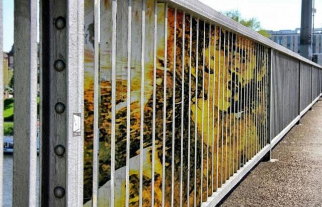80 streetart design creatifs Vol 17 (50)