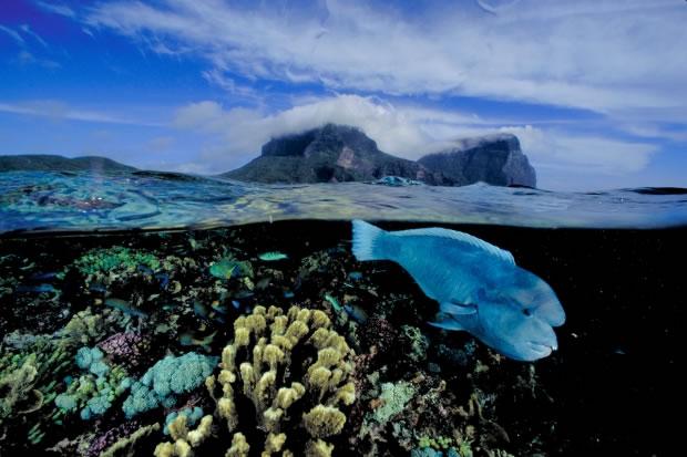 24 Vue sur l'île Lord Howe (Australie, 2004)