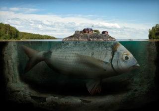 Porfolio : Les magnifiques photos-montages d'Erik Johansson 1