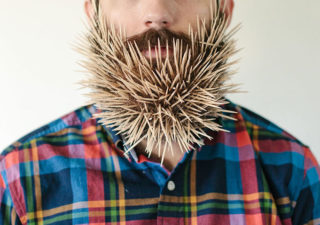 Will It Beard - 1 barbe et ses déclinaisons design