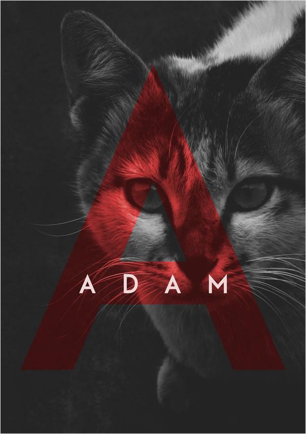 free-font-adam-8
