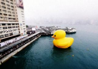 Timelapse : Hong Kong Hunky Dory