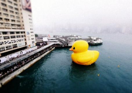 Timelapse : Hong Kong Hunky Dory 12
