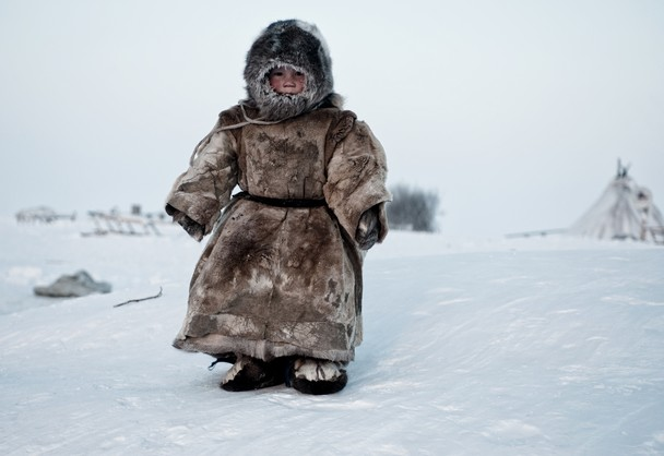 Living on the Tundra by simon morris