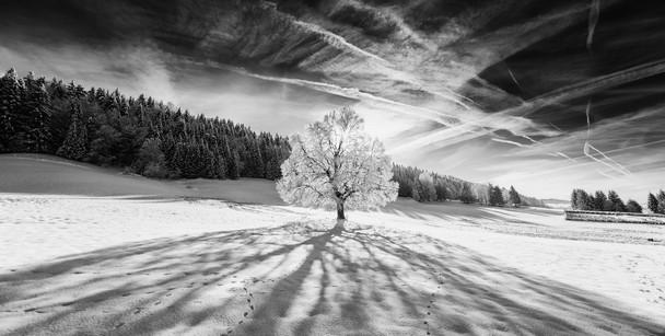 Vallée de Joux, Switzerland - Cris Schmid