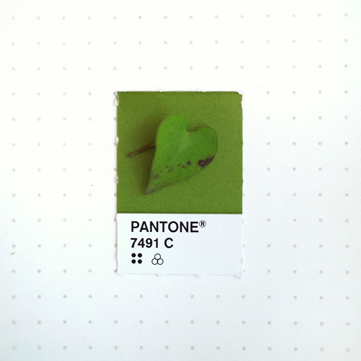 objets-couleur-pantone-1