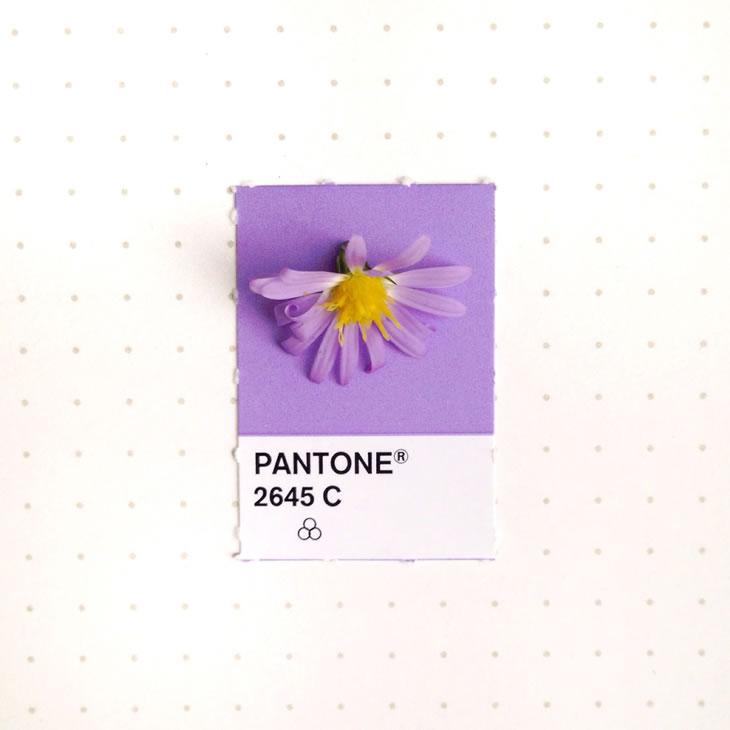 objets-couleur-pantone-10