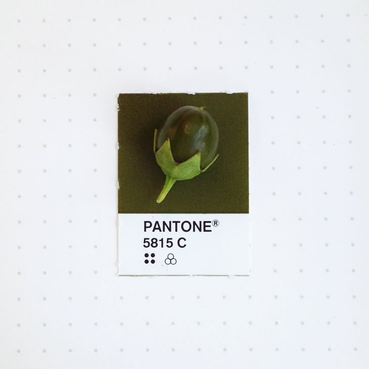 objets-couleur-pantone-2