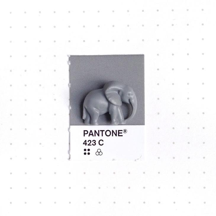 objets-couleur-pantone-23