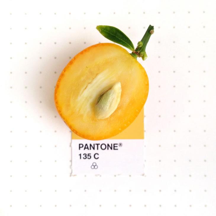 objets-couleur-pantone-30