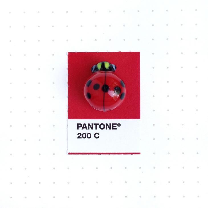 objets-couleur-pantone-41