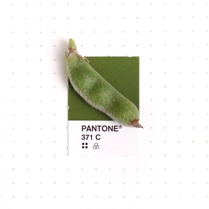 objets-couleur-pantone-42