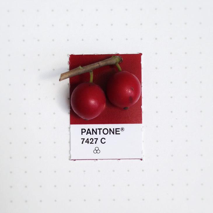 objets-couleur-pantone-44