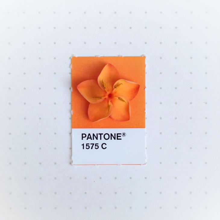 objets-couleur-pantone-45
