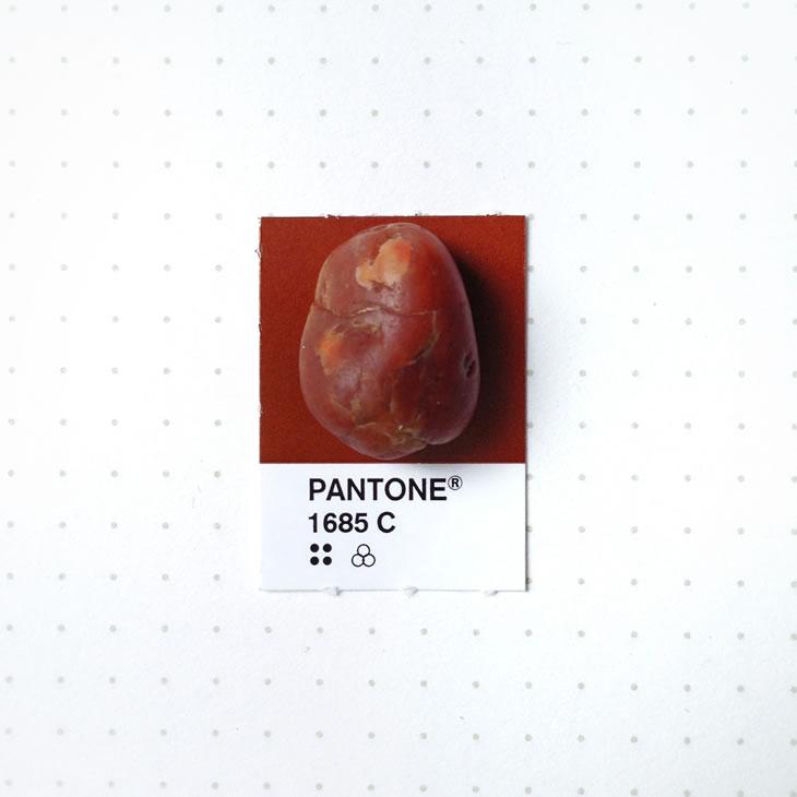 objets-couleur-pantone-50