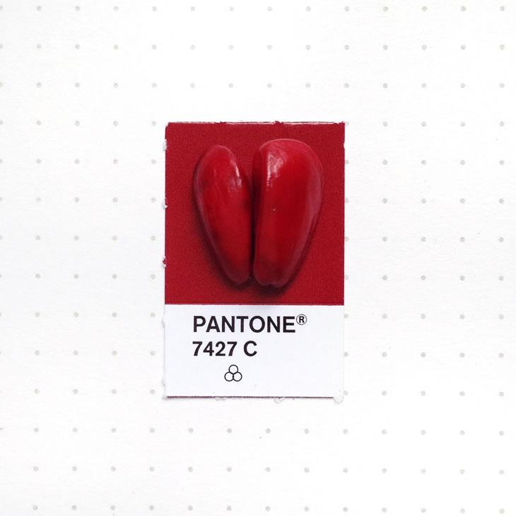 objets-couleur-pantone-9