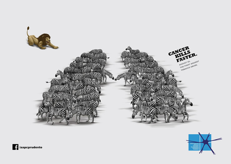 graphic-ads-olybop-aout14-12