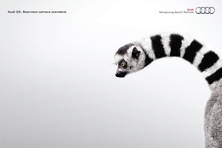 graphic-ads-olybop-aout14-13