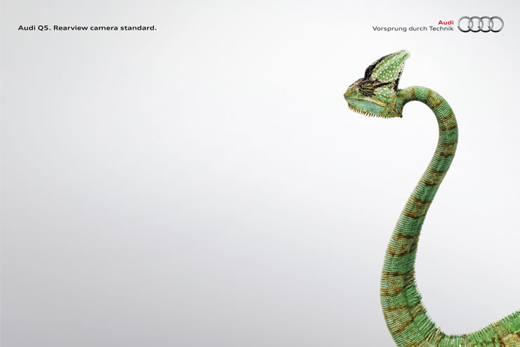 graphic-ads-olybop-aout14-14