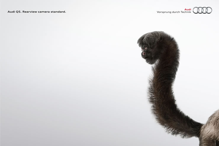 graphic-ads-olybop-aout14-15