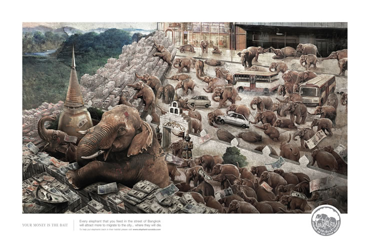 graphic-ads-olybop-aout14-44