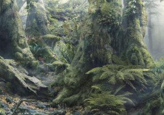 Botanimal - Illusions d' animaux dans la foret pour WWF