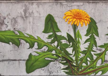 Timelapse : Naissance de fresques StreetArt 9