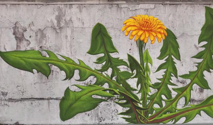 streetart-mona-caron