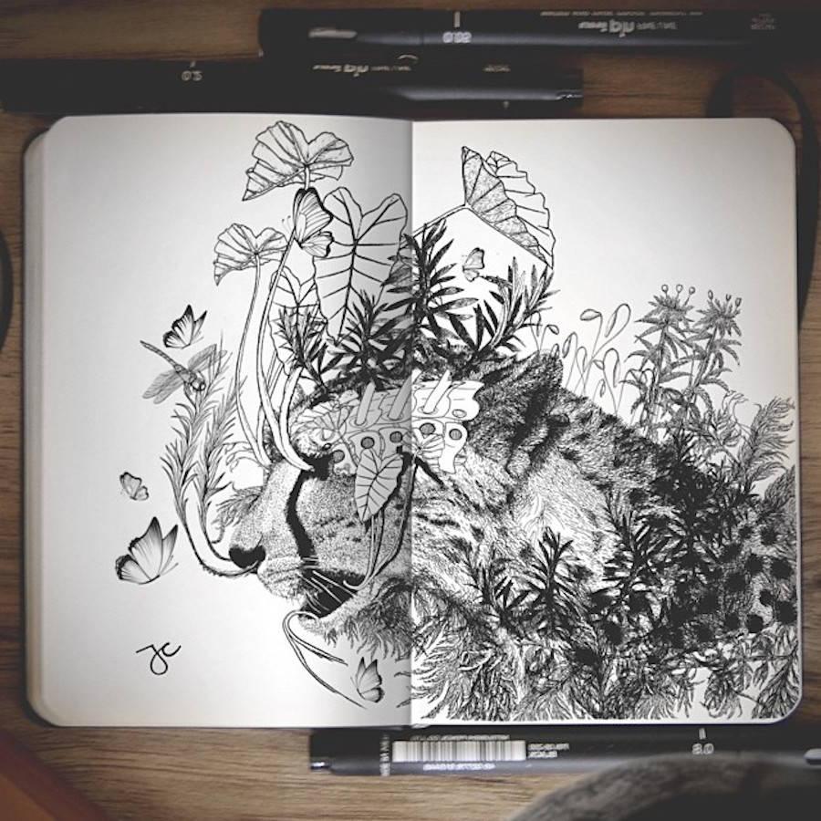 dessins-Joseph-Catimbang -5