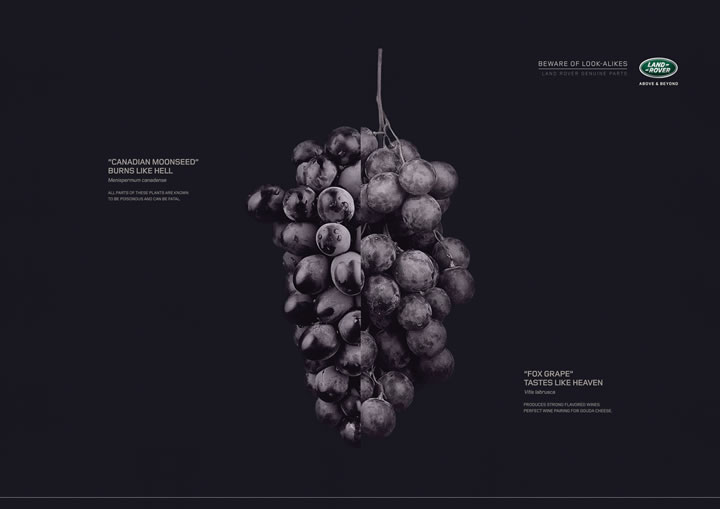 print-creatif-septembre-2015-olybop-69