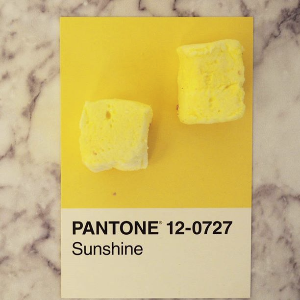 pantone-product-irl-19