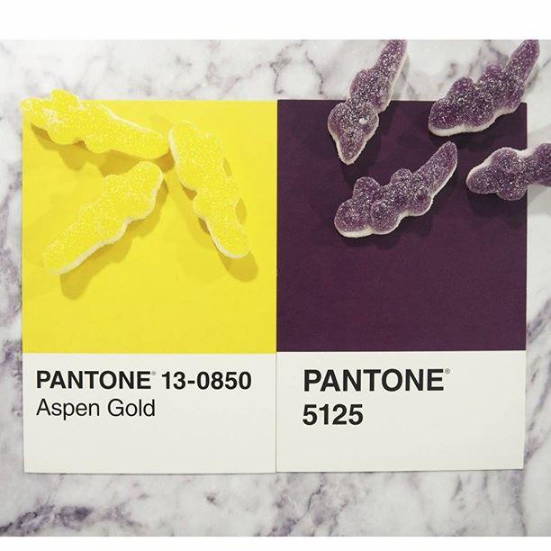 pantone-product-irl-26