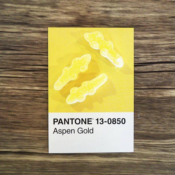 pantone-product-irl-38
