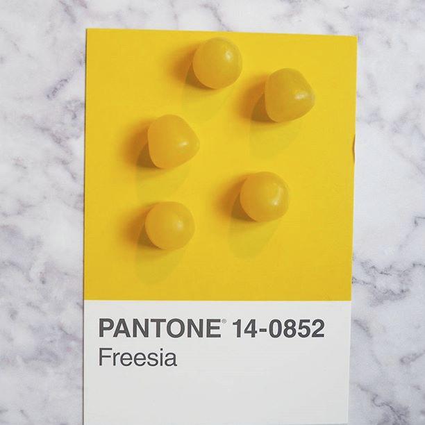 pantone-product-irl-5