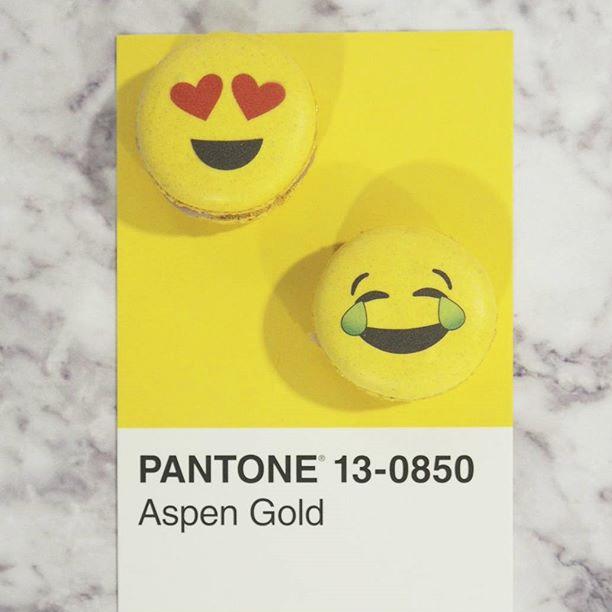 pantone-product-irl-6