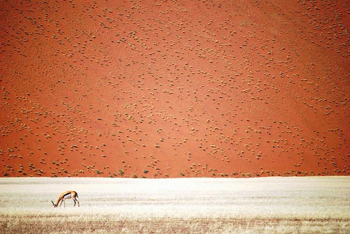 national-geographic-2016-shortlist-traveler-photo-9