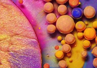 Colors : Un ballet de couleurs, la symphonie des mélanges