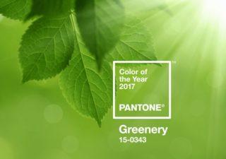 Greenery - La couleur Pantone 2017 1