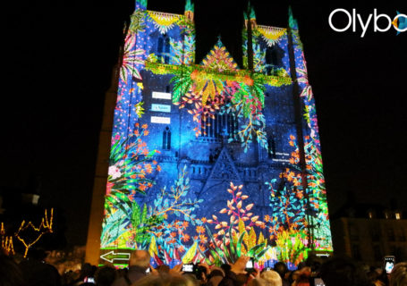 Light Lining : Vidéo complète l'Odyssée des Rêves - Illuminations de Nantes 2016 3