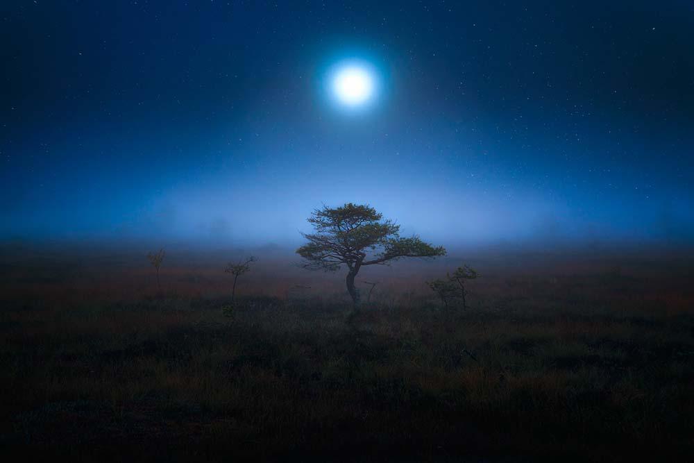 Photographies : Paysages lunaires 5