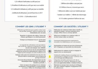 Infographie : Cartographie des réseaux sociaux ( Version 2017) 1