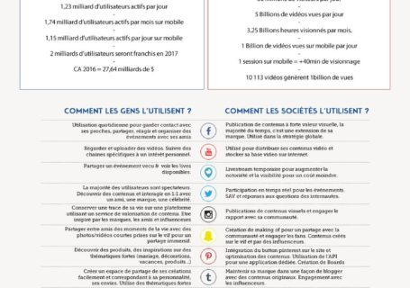 Infographie : Cartographie des réseaux sociaux ( Version 2017) 6