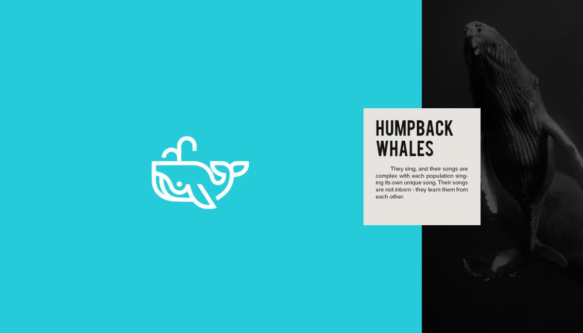 Les logos minimalistes d'animaux en voie de disparition 11