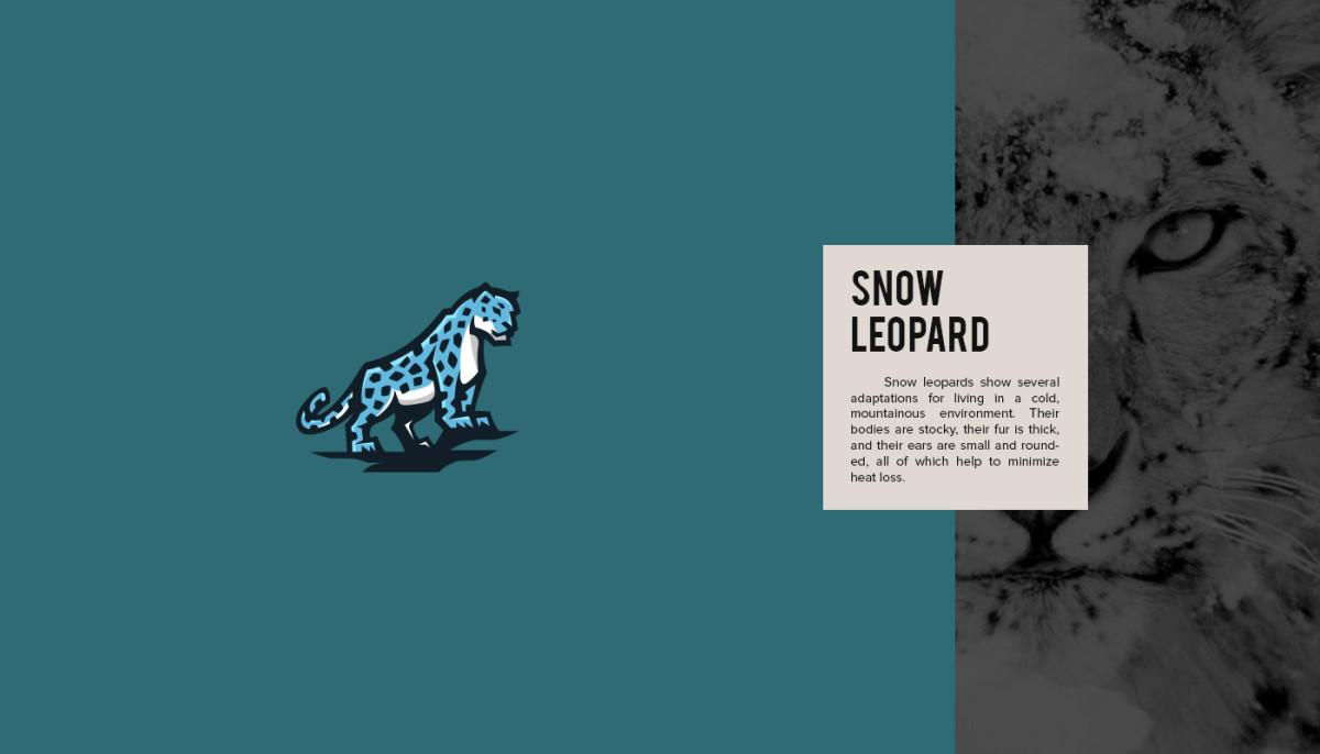 Les logos minimalistes d'animaux en voie de disparition 16