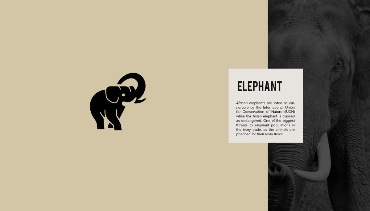 Les logos minimalistes d'animaux en voie de disparition 19